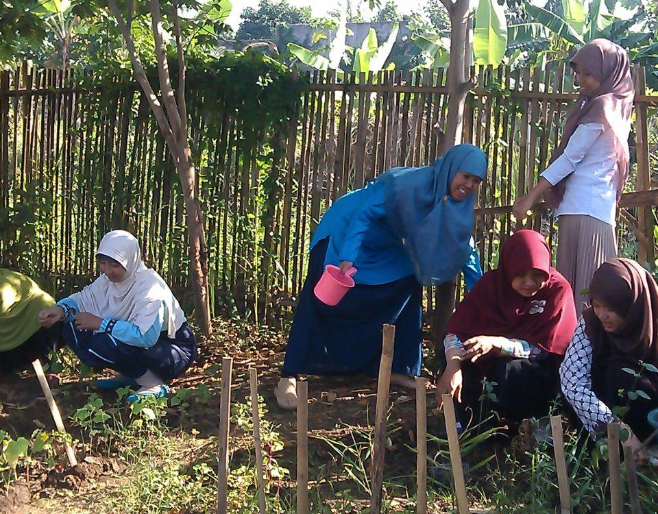 Membangun Peradaban melalui Sekolah Alam